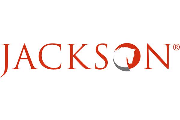 Jackson National Life Insurance Company Logo Vector PNG
