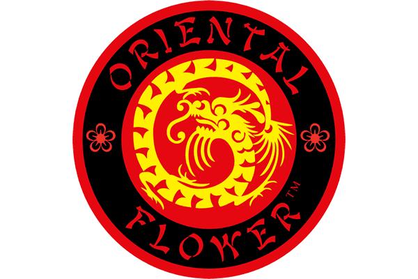 Oriental Flower Logo Vector PNG